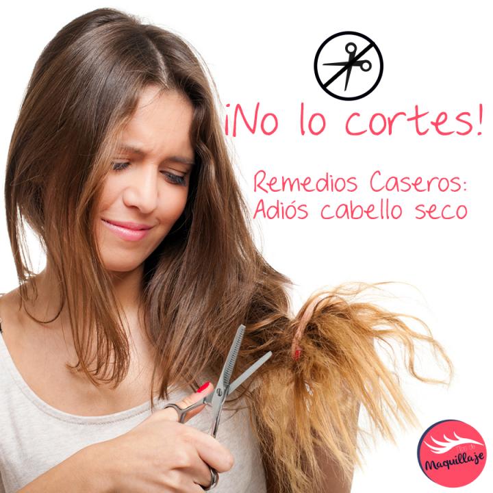 Remedios caseros para humectar tu cabello seco